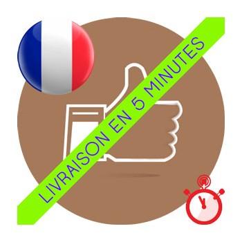 Likes Français Instagram (100% réels & actifs)