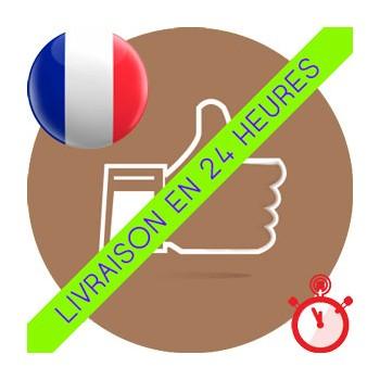 Likes Français Instagram (Basse qualité & Livraison standard)