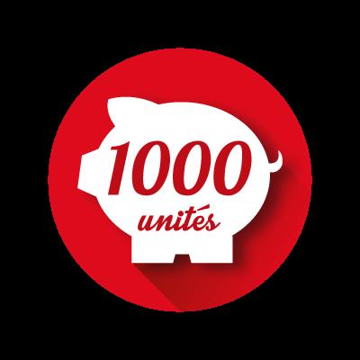 Crédit Store 1000 unités
